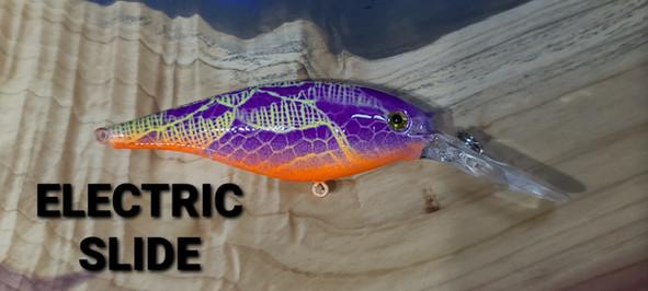 ELECTRIC SLIDE.jpg