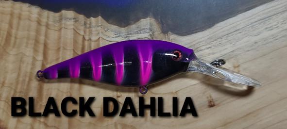 BLACK DAHLIA .jpg