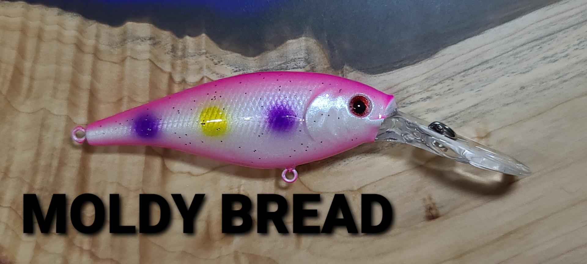 MOLDY BREAD.jpg