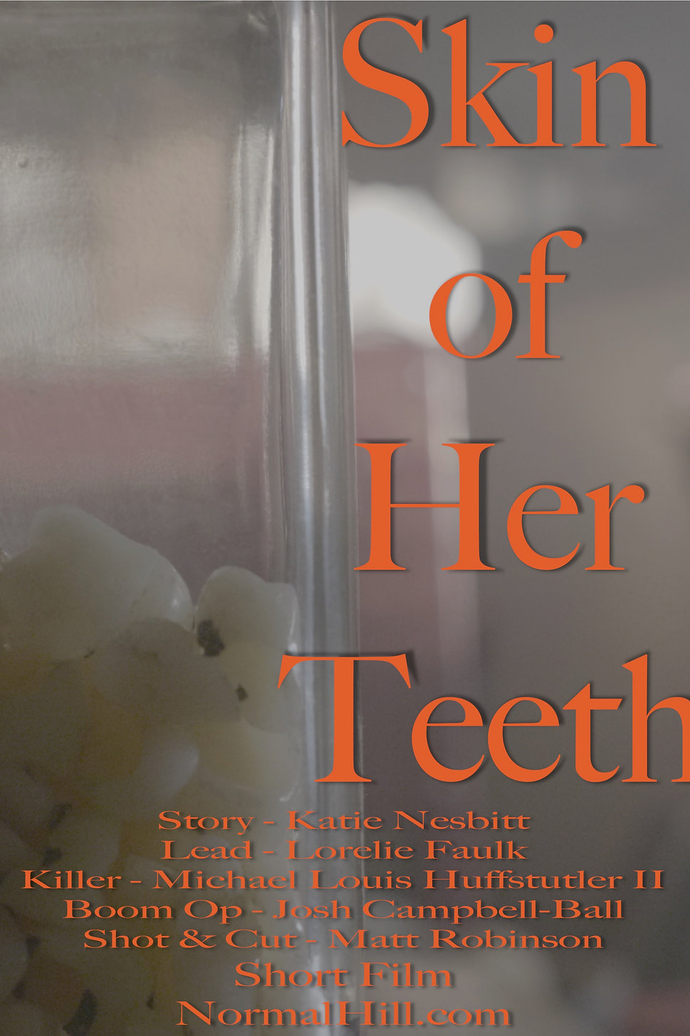 POSTER Skin of Her Teeth.jpg