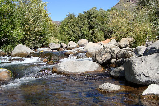 YHH Creek.jpg
