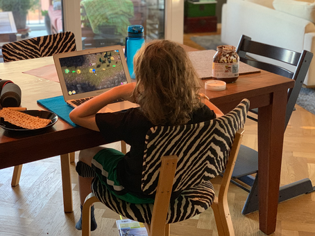 Remote work works, if you don't have (small) kids