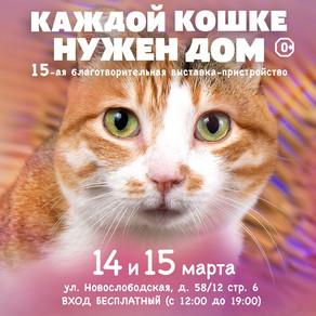 """15-я выставка-пристройство """"Каждой кошке нужен ном"""""""