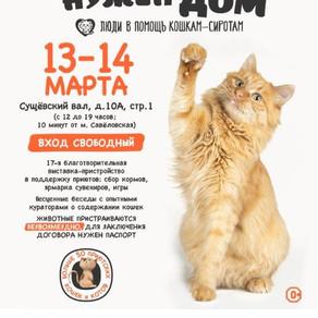 """17-я выставка-пристройство """"Каждой кошке нужен ном"""""""
