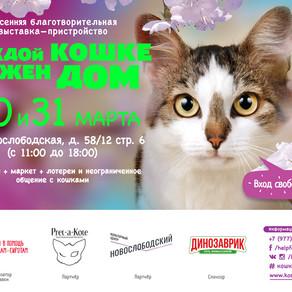 """12-я выставка-пристройство """"Каждой кошке нужен ном"""""""
