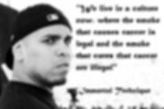 immortal technique, immortal, techniique, cannabis, cannabis kills cancer, cannabis heals cancer, cancer cure, truth about cancer, the truth about cancer, the truth, the truth about, how to, how to heal cancer, bookstagram, instagood, goodreads challenge, payhip, non fiction, self help, how to, truth about, the truth about, truthseeker, truthseekers, truth seeking, awakening people, deal, deals, ebook, ebooks, new book, bookshelf, library, nanowrimo, mswl, indie pub, nook, bookswag, ff, book, books , amazon, lulu, kpd, smashwords, buy, sell, store, online, online shopping, shop, shopping, online store, sale, sales, book shop, book store, online book, shop, online book store, wonderland by russell strand, Russell strand, iwonderland, I wonderland, wonderland, wonderland shop, wonderland store, goodreads, good read, new, read, reading, freado, pub it, kobo, book buzz, booksactually, booktastic, bookgasm, meditation, awaken,  awakening, spirit, spirituality, cryptozoology, knowledge, read