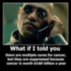 matrix, neo, morpheus, what if i, what if i told you, cancer cure, cancer cures, contraversial knowledge, forbidden knowledge, truth, awakening, wake up to this, Free App, news, new, iwonderland, iwonderland app, truth, awakening, russell strand, knowledge, buy, shop, online shopping, shopping, store, amazon, lulu, kindle, bookstagram, discover, learn, how to, how to heal cancer, cancer, cancer cure, cures, medicine, natural medicine, natural cure, alternative medicine, alternative nutrition healing, reverse cancer naturally, health benefits, healthy benefits, cryptozoology, paypal, findings, find, book, books, library, read, new, reading, bookshelf, wonderland, how to make colloidal silver, bookbuzz, nanowrimo, ebook, ebooks, mswl, writetip, indie pub, self published, smashwords, goodreads, buy, shop, shopping, online, online shopping, store, online store, cover, indie author, non fiction, booktastic, fugly, bookgasm, bookswag, instadaily, instagood, sony, ff, nook, contraversi truth