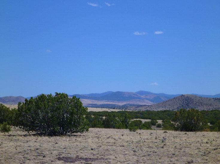 Concho Valley Lots 27 & 28