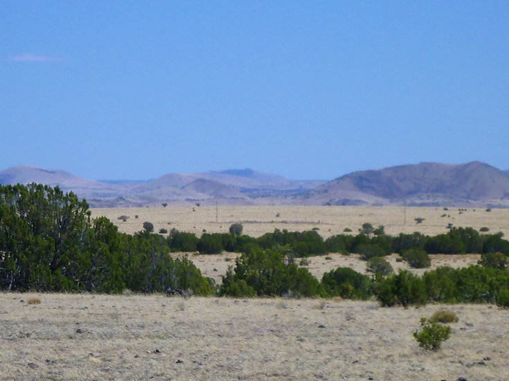 Concho Valley Lot 301