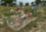 Wounded Knee.Jacqueline Poggi.jpg