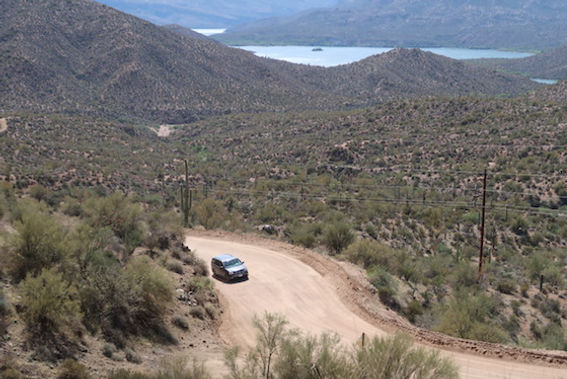 Kaktusser i Arizona. drivingusa.dk