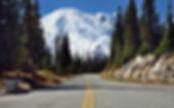 Paradise in Mount Rainier. Mark Stevens.jpg