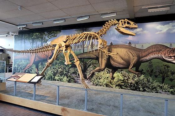 Dinosaur National Monument.jpg