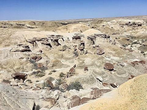 280 fossile hvirveldyr er udgravet i Ah-shi-sle-pah. Roadtrip og nationalparker i usa