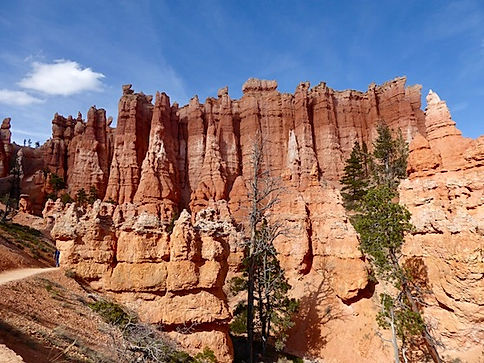 Bryce Canyon, Utahs måske smukkestenationalpark.