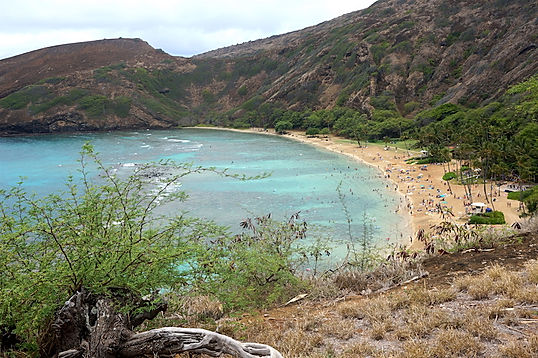 Hanauma Bay, Hawaii. Roadtrip ruter og nationalparker i USA
