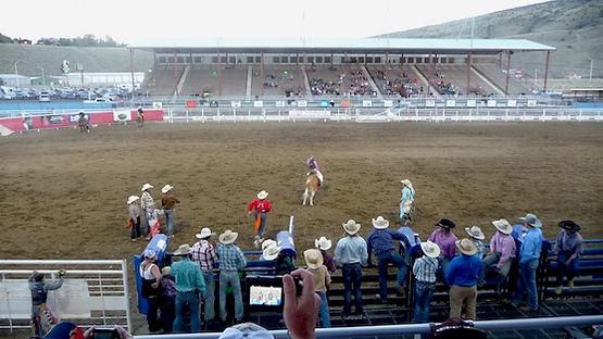 Rodeoshow hver aften i Cody.
