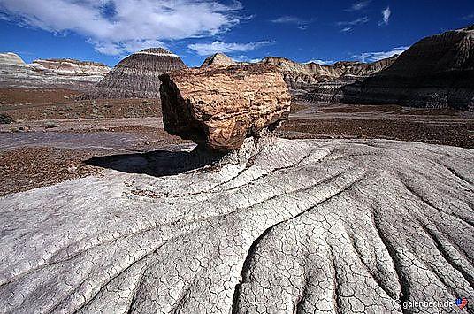Fra Jurassic til ørken i Petrified Forest