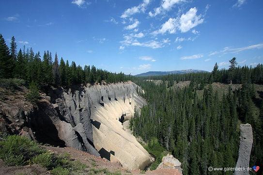Store skovområder ved Crater Lake Nationalpark