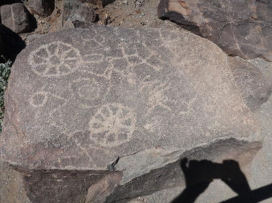 Signal Hill i Saguaro har mange petroglypher. drivingusa.dk