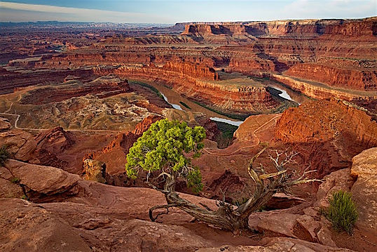 Dead Horse Point i Canyonlands. Roadtrip ruter og nationalparker i USA