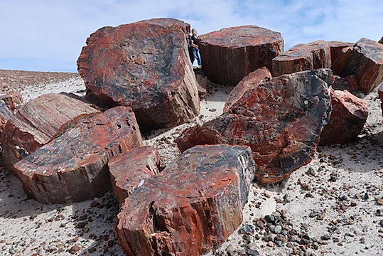 Stop ved smukke Blue Mesa, i Petrified Forest.