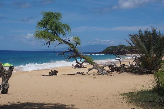 Big Beack i Maui, Hawaii, Roadtrip ruter og nationalparker i USA