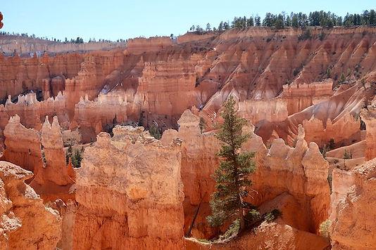 Bryce Canyon. Drivingusa.dk.jpeg