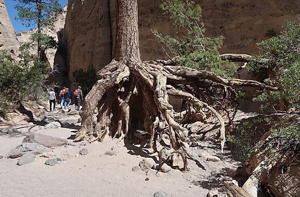 Tent Rocks, ligger ganske tæt på Santa Fe.