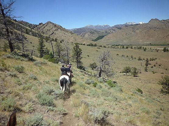 Tag på ridetur i udkanten af Yellowstone.