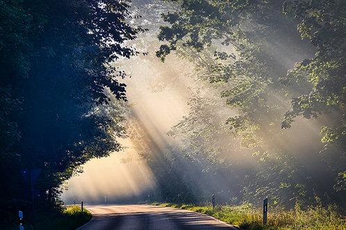 Light Breeze