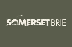 Brand Concept for Somerset Brie