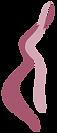 Frauenarzt Fürth