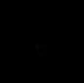 coptercam_luftaufnahmen_mit_drohnen
