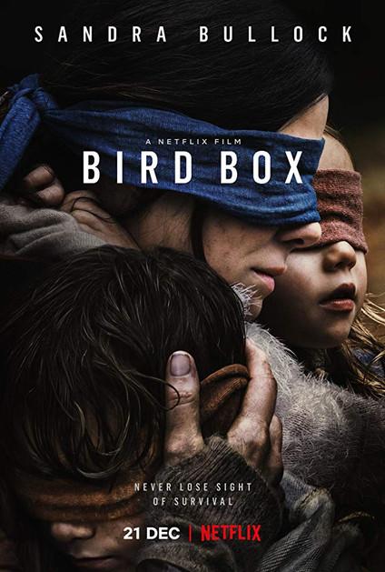 Bird Box - 0.5/5 (A horrendous Netflix movie)