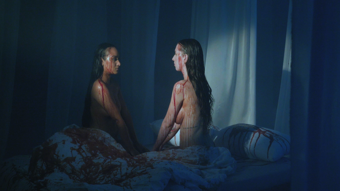 Lionstorm, music video