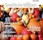 Love2Smile Mini Magazin 2018 Október