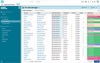 Mashmatrix_Sheet___Salesforce-2.jpg