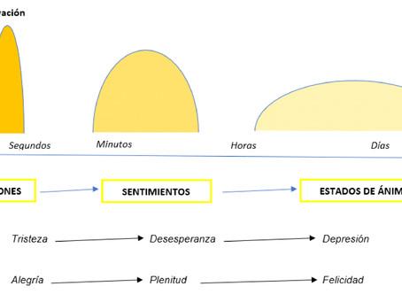 Diferencia entre emoción, sentimiento y estado de ánimo