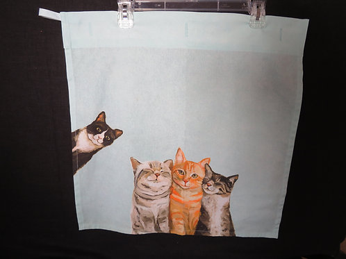 Curious cats on mint green towel