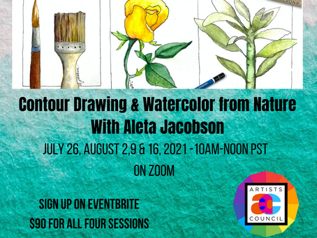 Contour Drawing & Watercolor from Nature