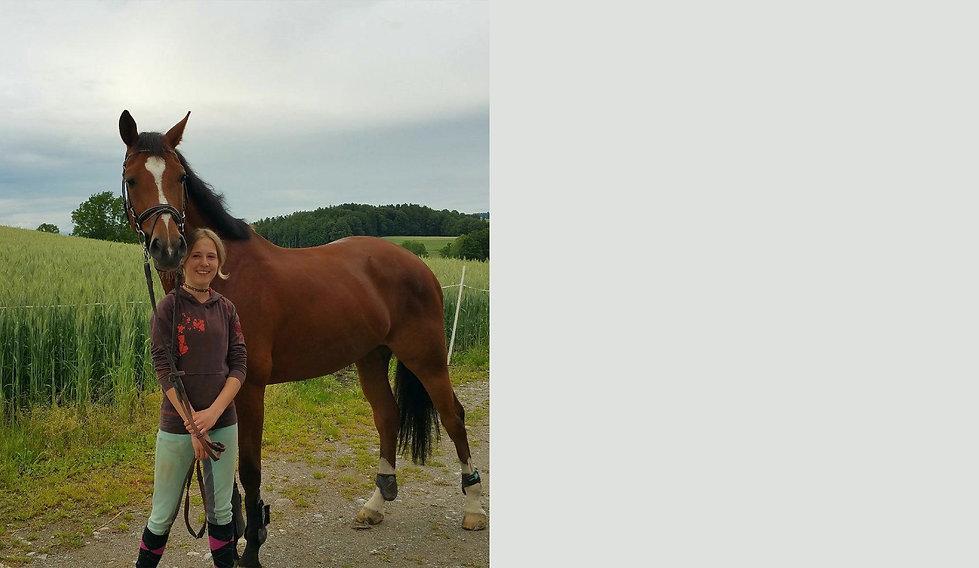...um die Liebe zu Pferden und die Leidenschaft des Reitsportes