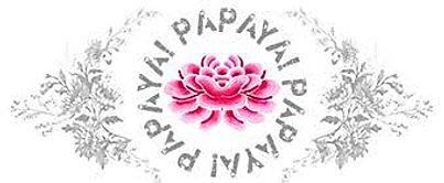 Papaya Art Logo.jpeg