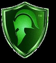 15991943253954912-disingerm-logo_edited.