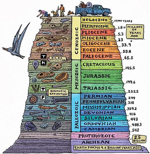 Darwin's layers.png