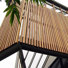 Captured from all angles /Spotted gum sc