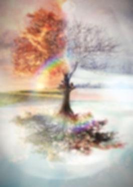 peinture-par-numero-arbre-des-4-saisons_edited.jpg