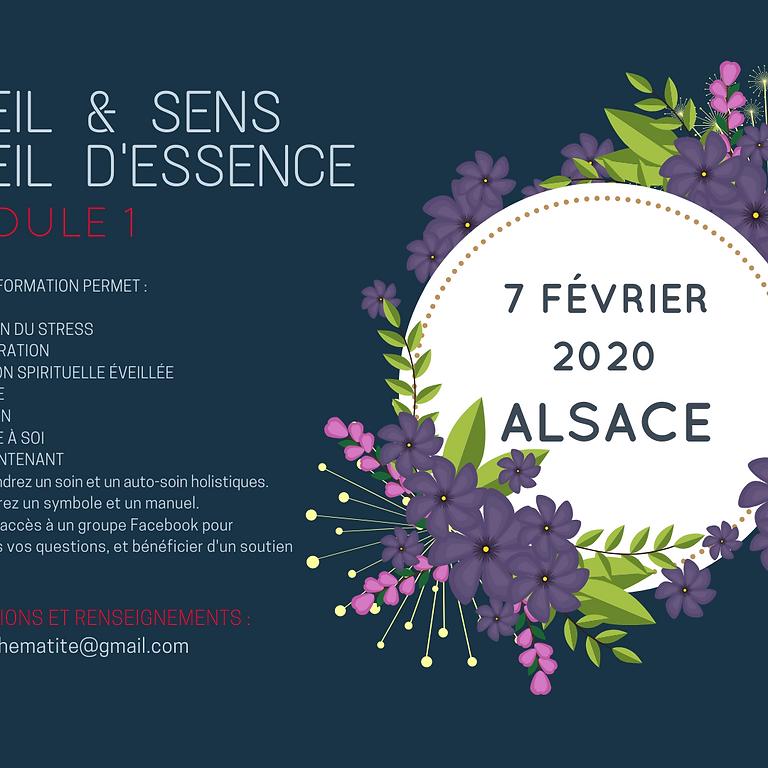 ALSACE Éveil & Sens - Éveil d'Essence : Module 1 (1)