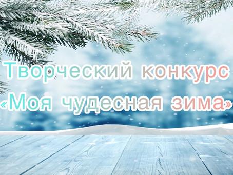 Моя чудесная зима