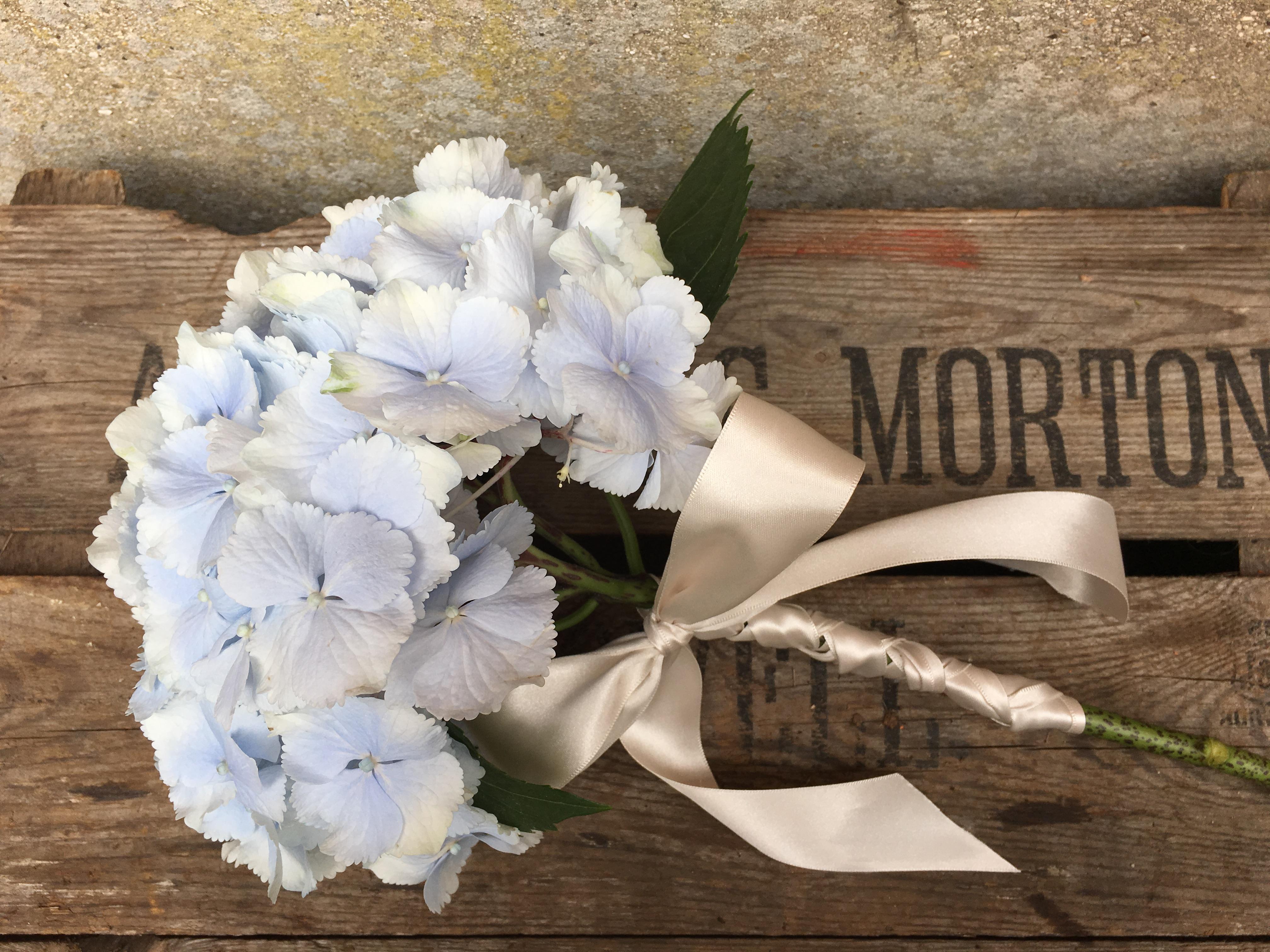 Flora_&_Nora_Blue_Hydrangea_Posy